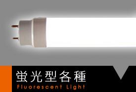 蛍光型各種